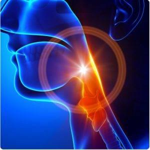 Pourquoi la laryngite est-elle souvent accompagnée de mal ...