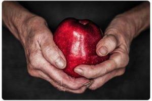 Link artrose voeding