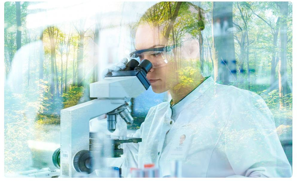 bioregulerend vs conventioneel