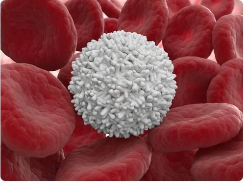 witte bloedcellen